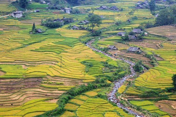 Visiter le Vietnam en 4 incontournables pour les vacances