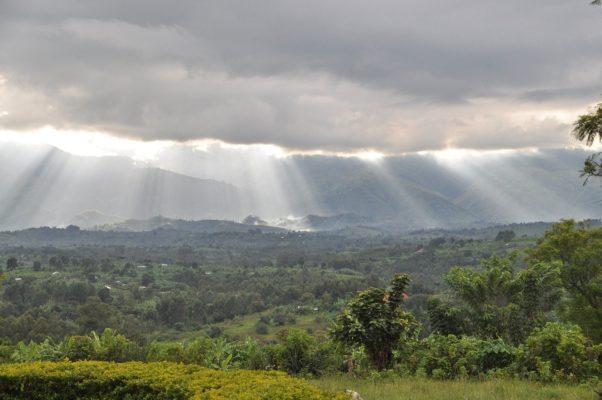 Emile Ouosso Ministre parle des forêts tropicales d'Afrique