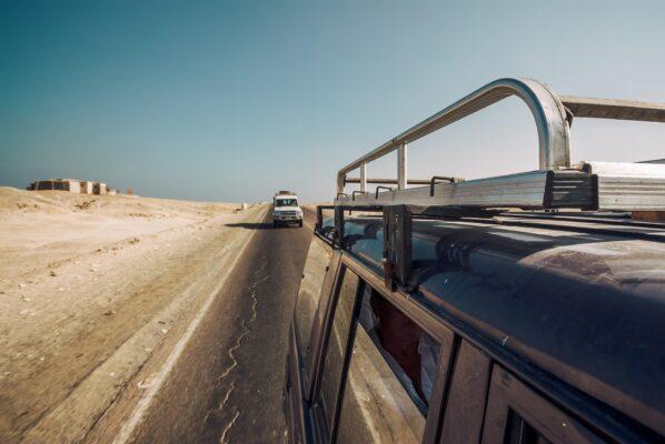 safari-desert